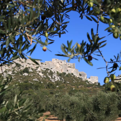 The castle and the medieval village of les Baux de Provence