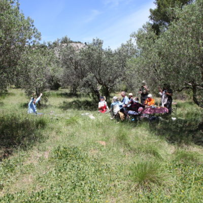 Picnic in the olive grove after the plein air session